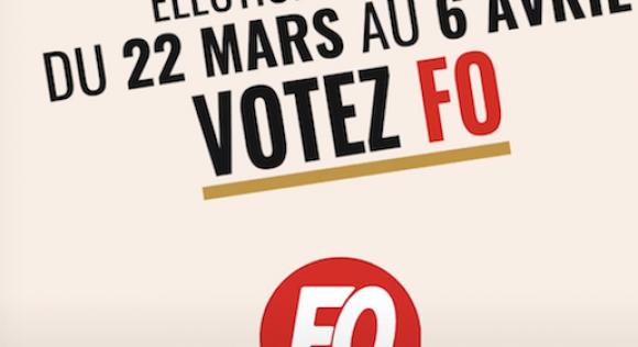 Élections TPE : votez et faites voter FO autour de vous !